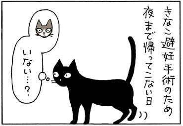 下のネコがいないと甘える猫の4コマ猫漫画