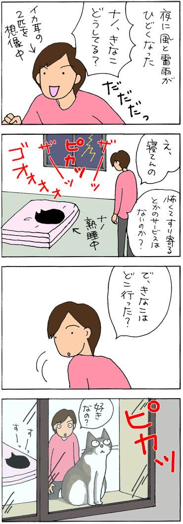 雷が好きな猫の4コマ漫画
