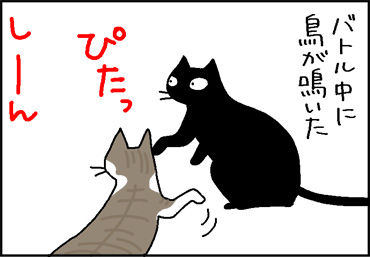 鳥が鳴くと動きが止まる猫の4コマ猫漫画