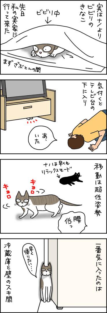ビビる猫の4コマ漫画