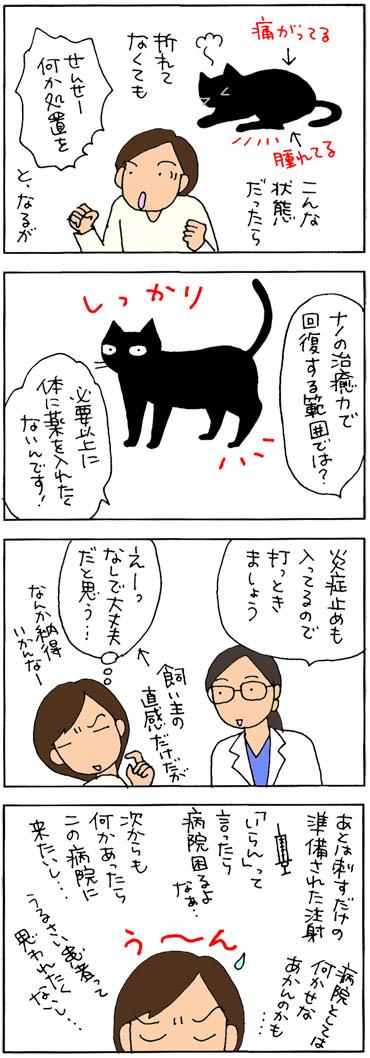 レントゲンを撮ったネコの4コマ猫漫画