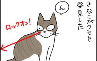 クモを狩る猫の4コマ猫漫画