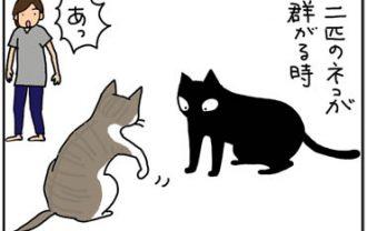ダンゴムシにじゃれる猫漫画