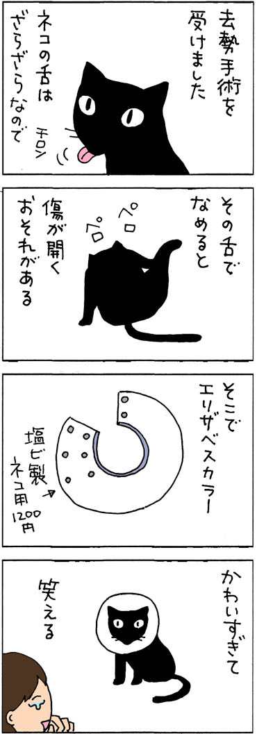 エリザベスカラーを付ける猫の4コマ漫画