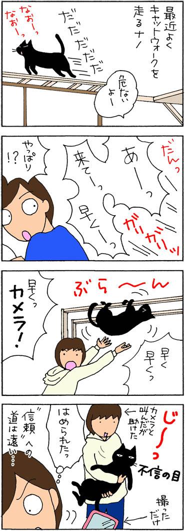 キャットウォークから落ちるネコの4コマ漫画