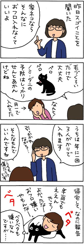 猫のお風呂の回数の4コマ猫漫画