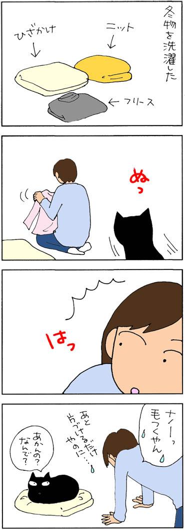 猫と衣替え4コマ猫漫画