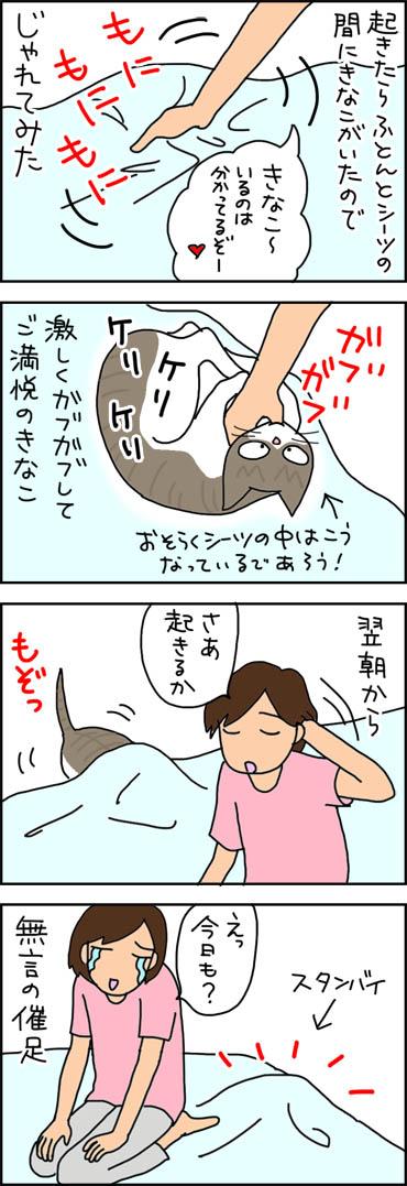 朝からじゃれるネコの4コマ漫画