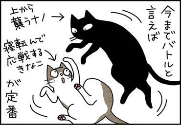 序列の替わる猫漫画