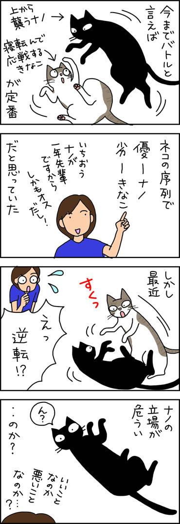 猫の序列が変わってきた4コマ猫漫画