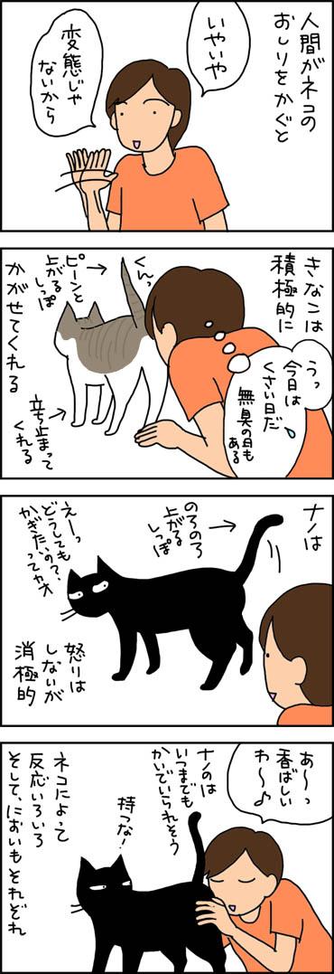 猫のお尻のにおいを嗅ぐ猫漫画