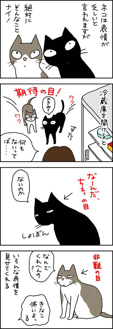 表情のある猫の4コマ漫画