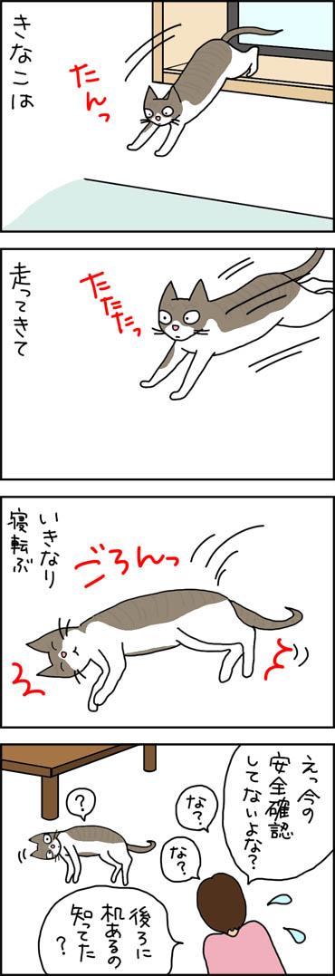 せっかちな猫が寝転ぶ4コマ猫漫画
