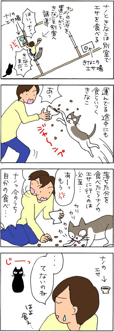 食欲の違いがあるネコの4コマ漫画