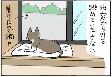 犬にびっくりした猫漫画