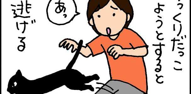 出かける時に限って乗ってくるネコの4lコマ漫画