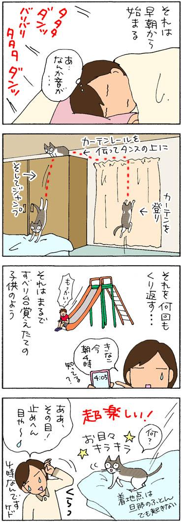 朝練するネコの4コマ猫漫画