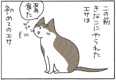 何を食べても丈夫な猫の4コマ猫漫画