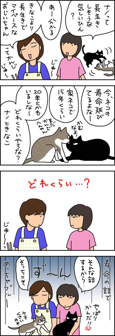 寿命の話でブルーになる猫漫画
