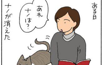 猫を探す4コマ漫画