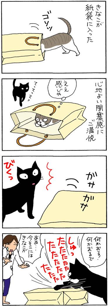 紙袋のネコをパンチする猫漫画