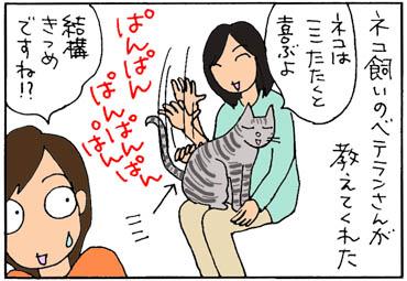 お尻ポンポンすると喜ぶ猫の4コマ漫画