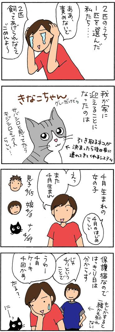 ネコを引き取る4コマ猫漫画
