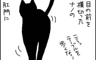 お尻に何かつけてる猫の漫画