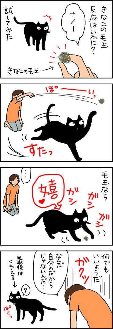 きなこの毛玉で遊ぶ4コマ猫漫画