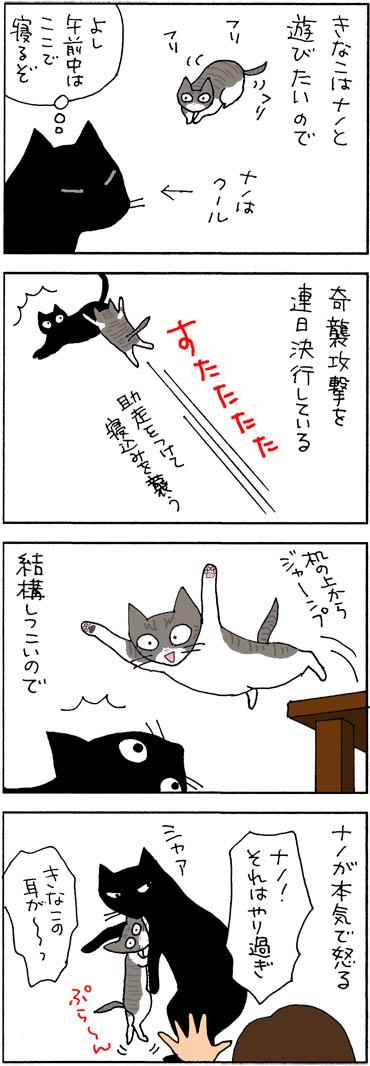 遊びたくて仕方ない猫の4コマ猫漫画