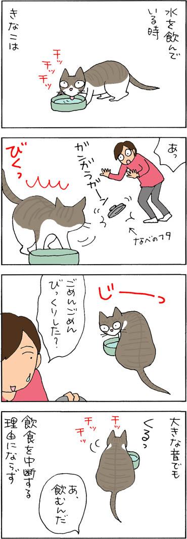 動じないネコの4コマ猫漫画