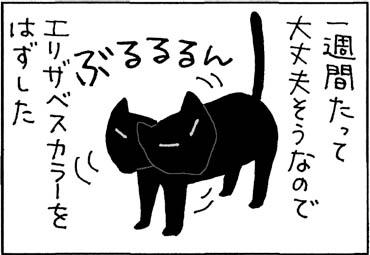 太ったかもしれない猫の4コマ猫漫画
