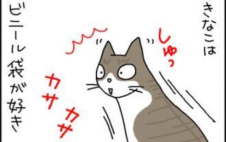 ビニール袋が好きな猫の4コマ猫漫画