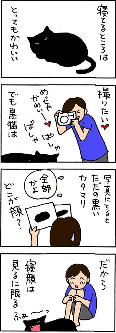 写真に撮ると黒猫の4コマ猫漫画