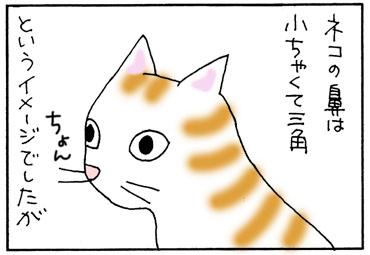 黒ネコの鼻の4コマ猫漫画