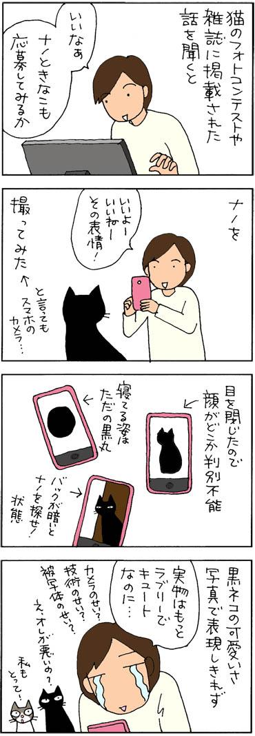 フォトコンテストを目指す4コマ猫漫画