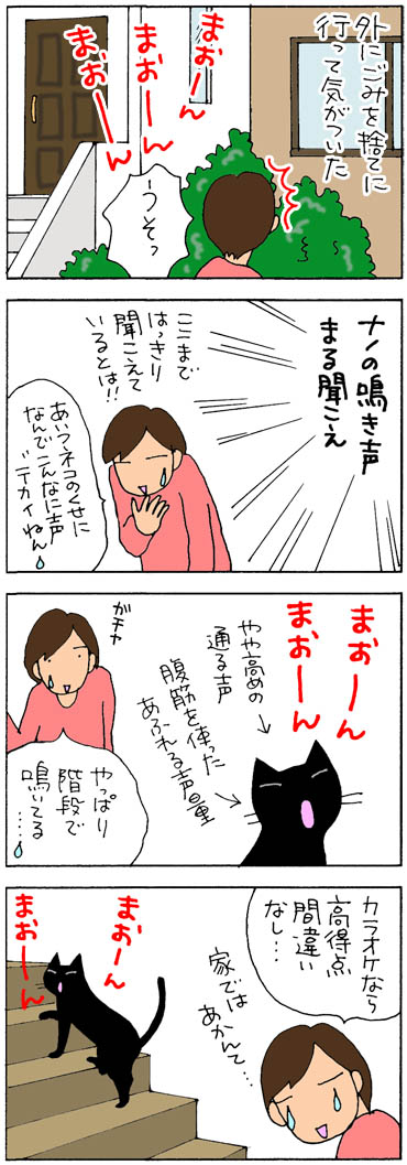 鳴き声が近所に聞こえているネコの4コマ漫画