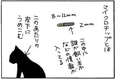 猫にマイクロチップを埋めた猫漫画