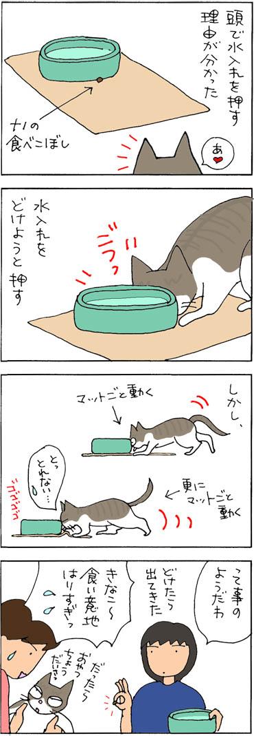 水入れが移動する理由の猫漫画