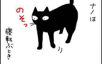 おっとりした猫の漫画