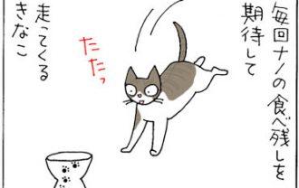 他の猫の食べ残しを狙う猫漫画