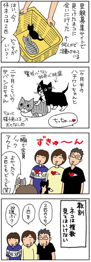 2匹目のネコを探しに行った4コマ猫漫画