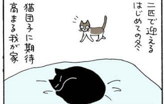 ヘッドロックでネコ団子する4コマ猫漫画