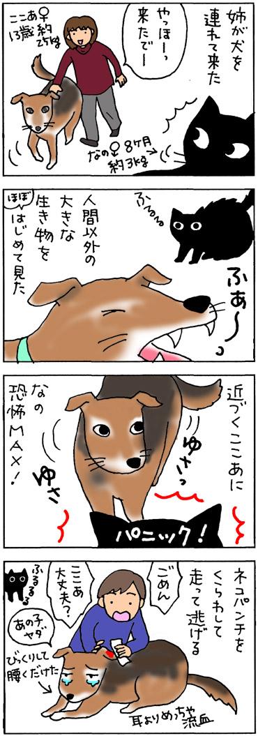 犬にネコパンチする猫の4コマ猫漫画