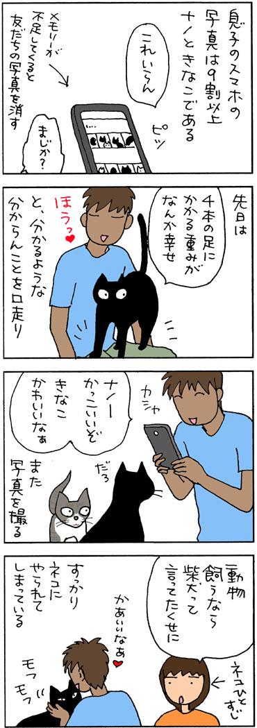 犬派が猫派になった4コマ猫漫画