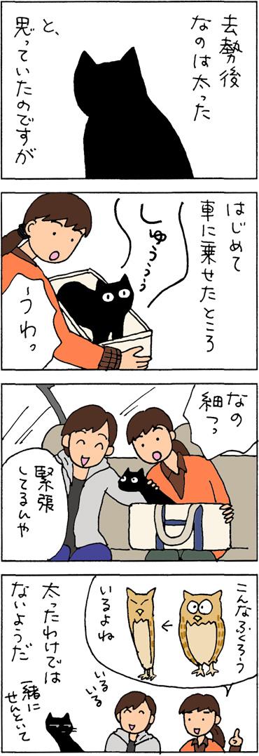 怖いと細くなる猫の4コマ猫漫画