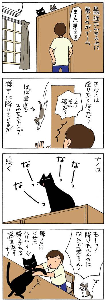 タンスに乗って下りれない猫の4コマ猫漫画