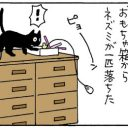 おもちゃが降ってきた猫の4コマ猫漫画