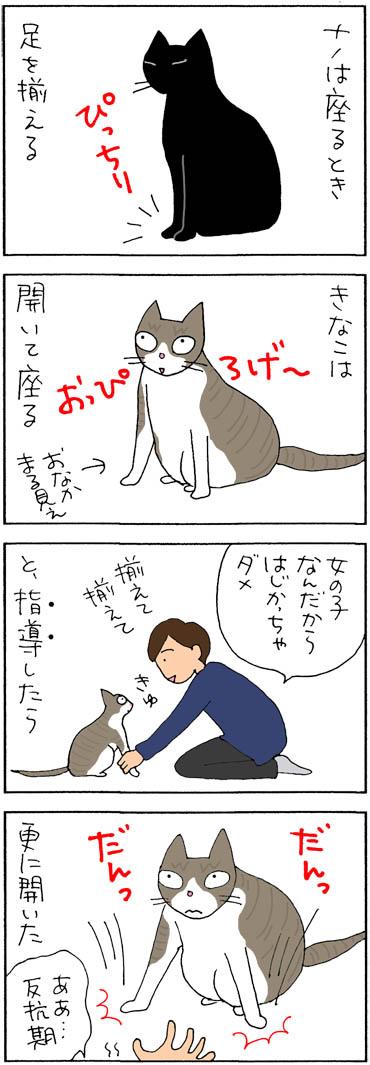 猫の座り方の4コマ猫漫画