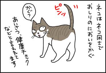 お尻の臭いを嗅ぐ猫漫画